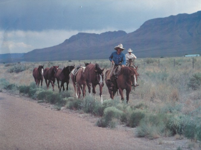 clay-linley-and-other-cowboys-smaller